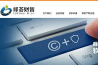 峰荟财智  网站设计
